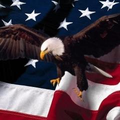 The_Eagle